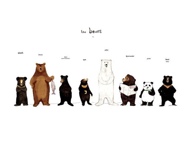 cute bear print