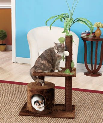 Cat Play Tower   LTD Commodities