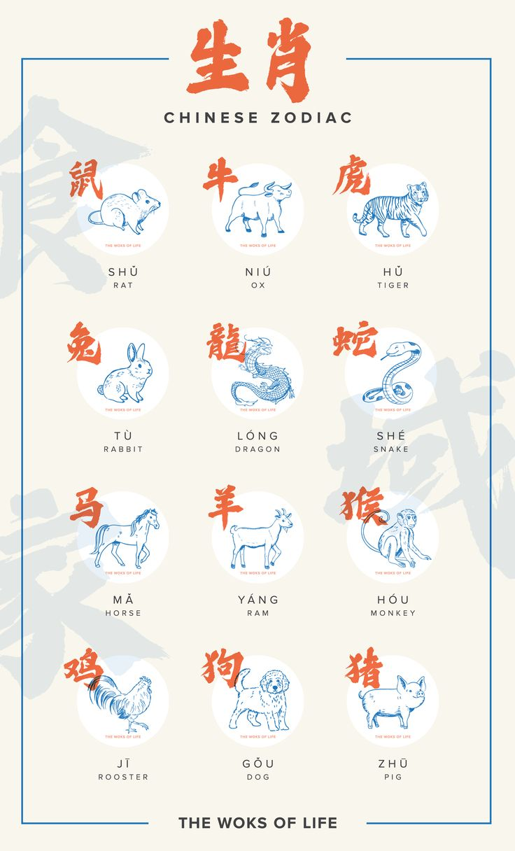 What's your Chinese animal sign? Chinese animal signs