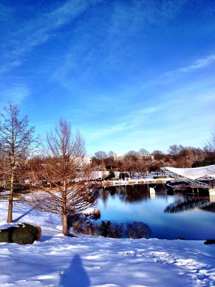 Amazing view #snow #lake