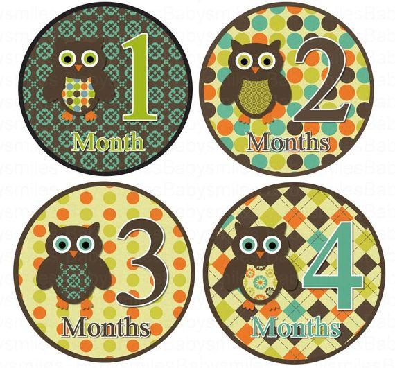 Monthly Onesie Stickers  NEW  Tanner  by BabySmilesBoutique, $9.99