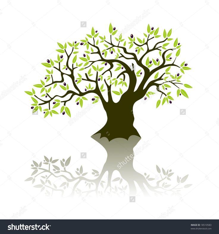 21 besten olive tree Bilder auf Pinterest