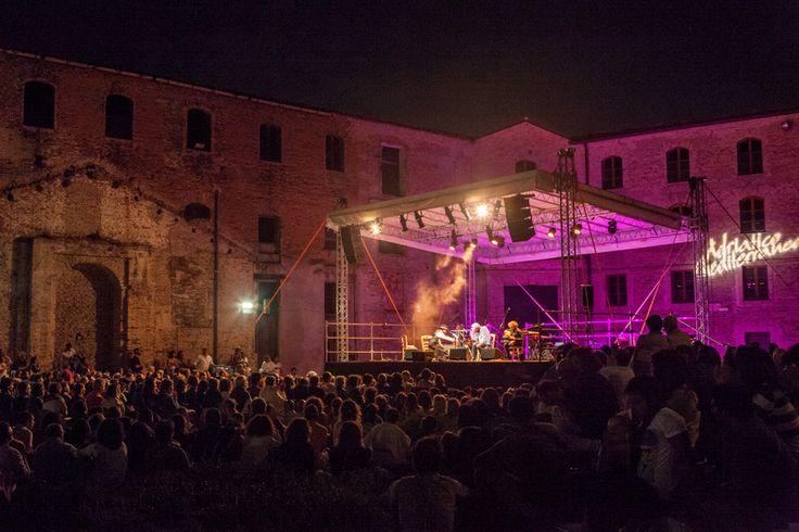 Vinicio Capossela - Adriatico Mediterraneo Festival 2013