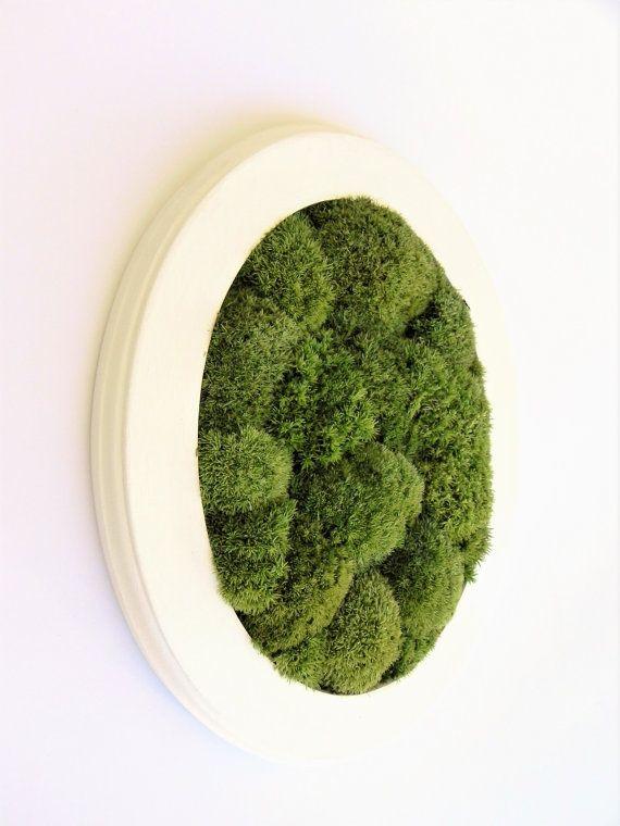 Preserved green moss wall decoration Green by VermontCraftStudio