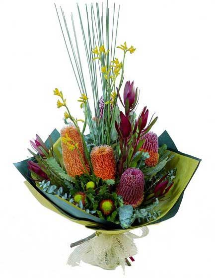 banksia, kangaroo paw, leucadendron and spear grass  - More Great Ideas from DriedDecor.com