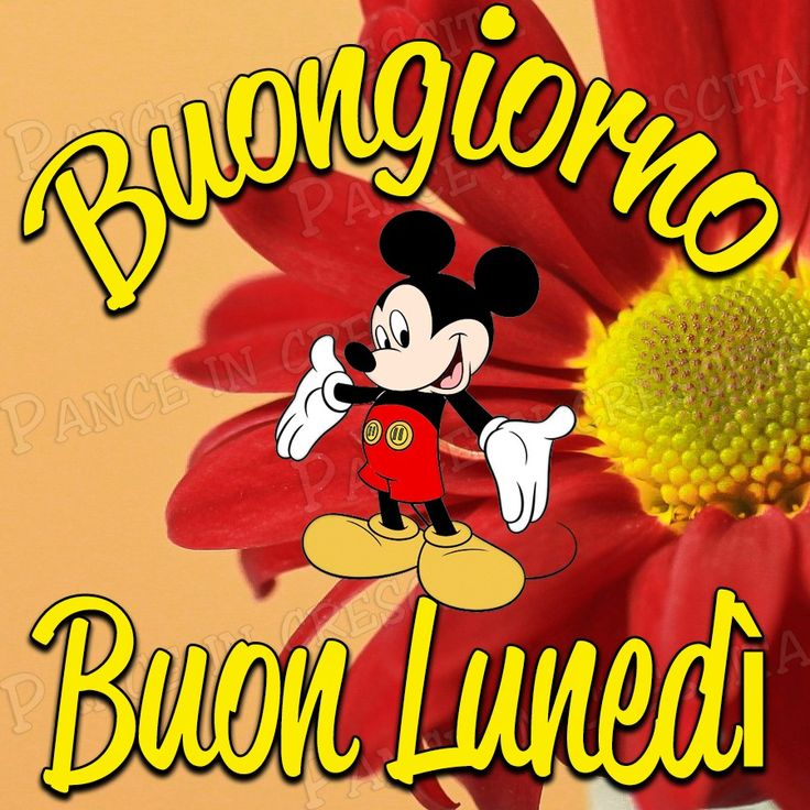 59 best buongiorno buon lunedi images on pinterest mornings