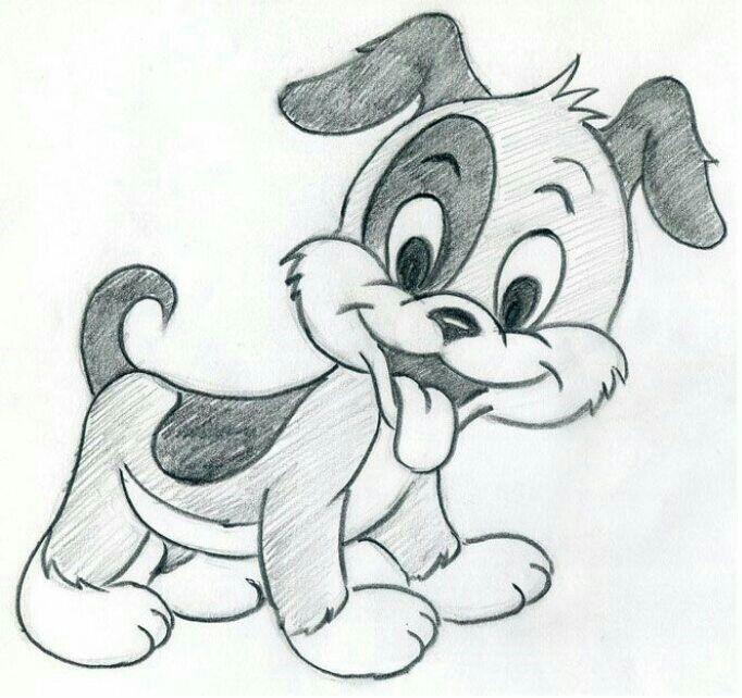Süßer kleiner Hund
