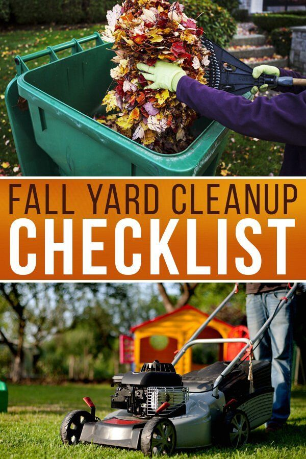Complete Checklist For Your Fall Yard Cleanup Yard Maintenance