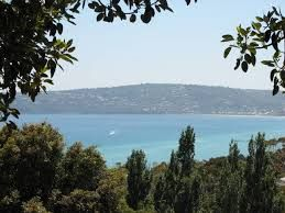 view from Heronswood Estate, Dromana - Google Search