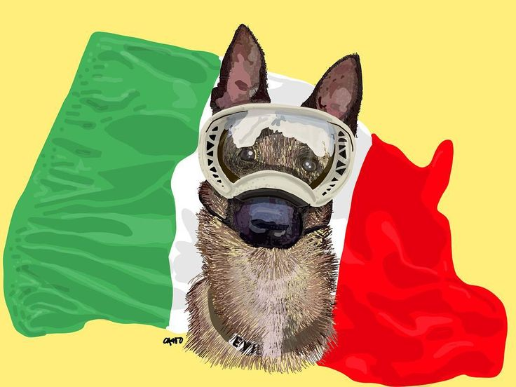 #Evil: otro de nuestros #heroes #mexicanos. #gracias eternas a él y todos los binomios #caninos que siguen rescatando a tantas #almas sin descansar. / Evil another true #mexican #hero. #thanks forever to him and the the other #canine binomials that keep rescuing all those #souls without taking any breaks whatsoever. #iPad #portrait #tribute #illustration #mexico #fuerzamexico