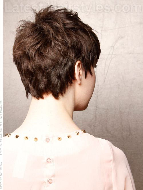 Soft Pixie Short Brunette Style Back View