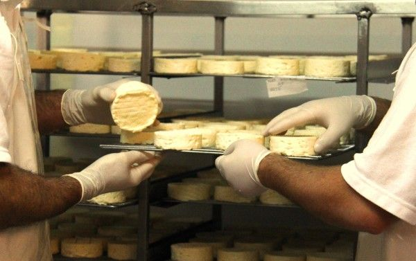 Wine and cheese? Yes please! The Hunter Valley Cheese Factory is the perfect stopover to break up a day of visiting Cellar Doors. They offer a range of fine handmade cheeses available for tasting and purchase.  Watch their cheese makers in action by taking in the cheese making talks offered daily at 11am and 3pm.