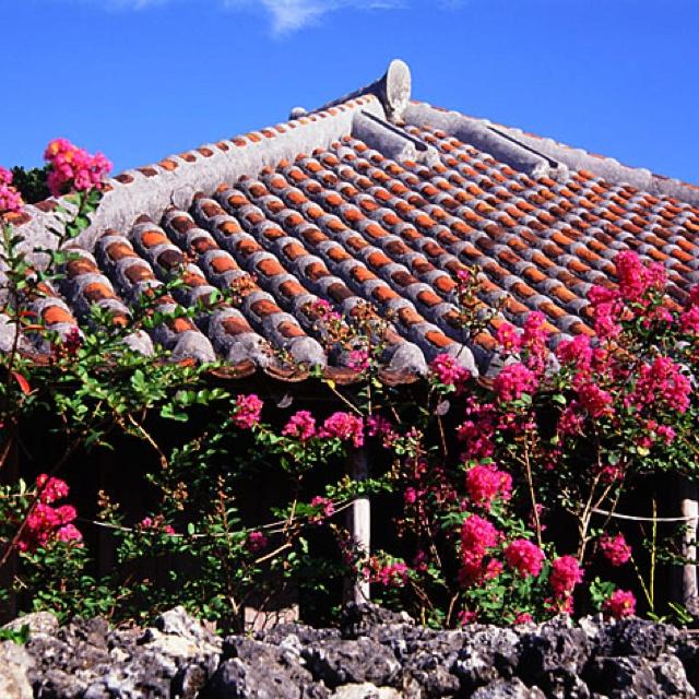 Old house of Ryukyu Islands