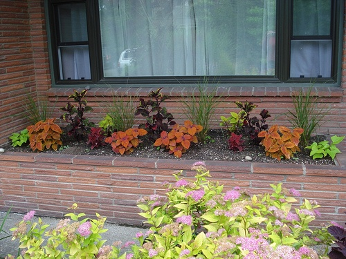 Brick Planters What To Plant In A Planter Pinterest