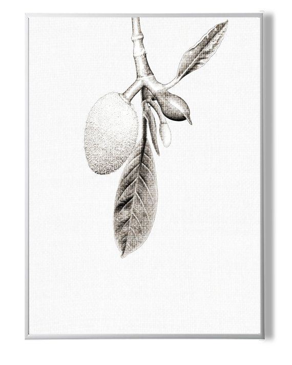 Fruit PrintFruit ArtTropical DecorTropical от YourPrintsShop