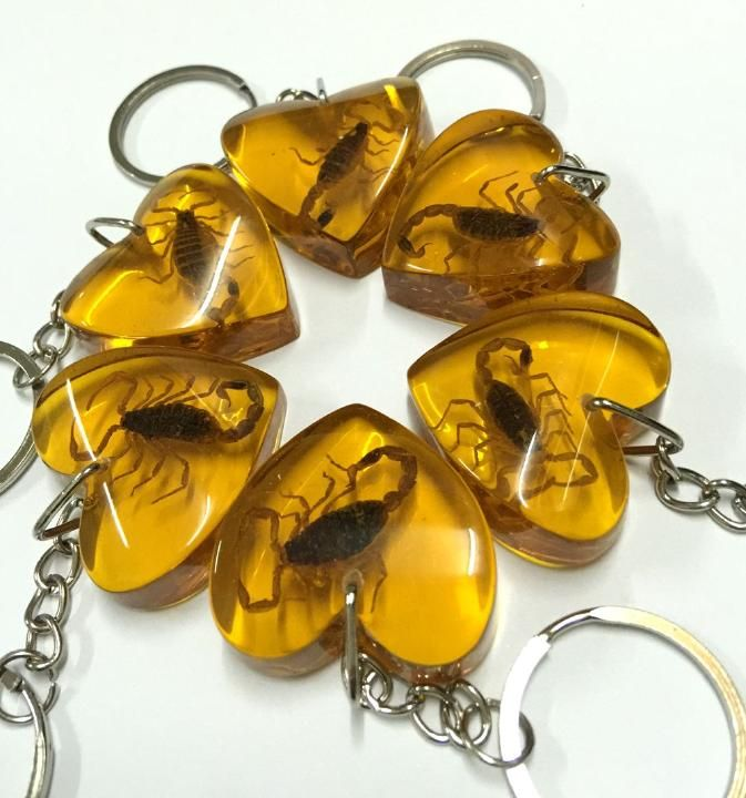 FREE SHIPPING 24 PCS real golden scorpion yellow heart style fashion insect keychain promotional Keyring Special Gift