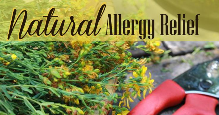 Do you know someone suffering from allergies, share these tips with them! 10 Tips for Reducing Allergies » Living Awareness Institute