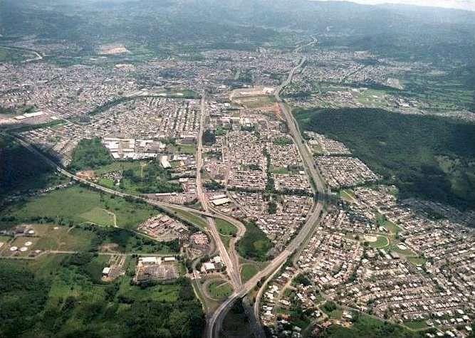 Ecosistemas urbanos Los seres humanos viven en ciudades y éstas pueden ser consideradas también  como ecosistemas especiales.  En las ciudades la especie dominante el ser humano y el medio físico lo forman las estructuras construidas por el mismo: edificios, calles, puentes,…