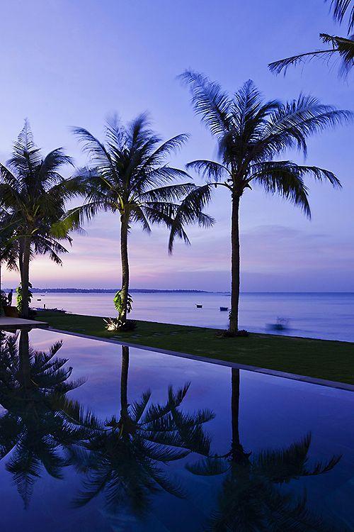 Imagen de summer, palms, and beach