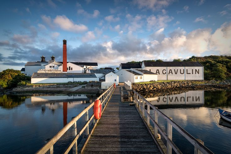 Lagavulin Distillery (Scotland): Top Tips Before You Go - TripAdvisor