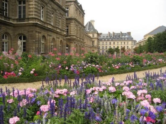 Jardin du luxembourg beautiful places pinterest d for Chaise jardin du luxembourg