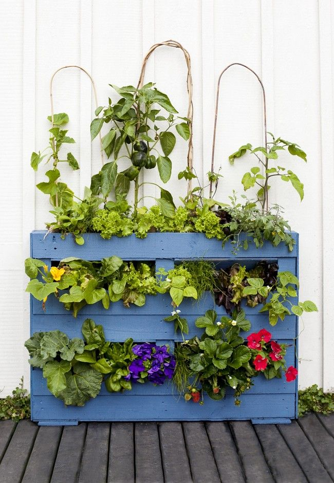 How to make a pallet garden   Good Magazine
