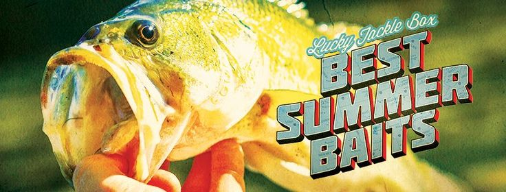 NOW INTRODUCING THEMED BOXES... This month's theme: The Best Summer Baits!