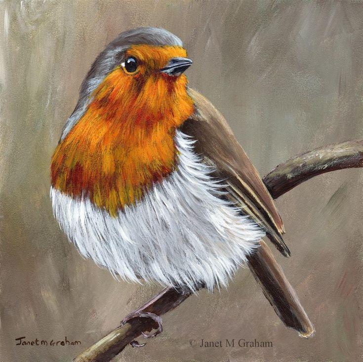 """Robin 7"" original fine art by Janet Graham"