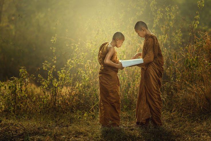Novice buddhist monk learning, temple. The bursting with natural beauty. Sakonnakhomn,Thailand | Thampitakkull Jakkree