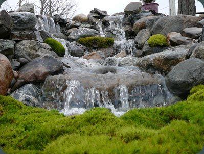 Water Feature. Backyard RetreatBackyard IdeasGarden ...
