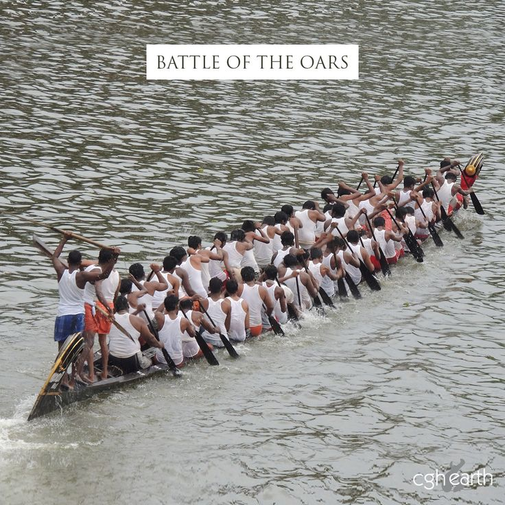 Nehru Trophy Boat Race. Hundreds of oarsmen battle it out for glory on magnificent snake boats.