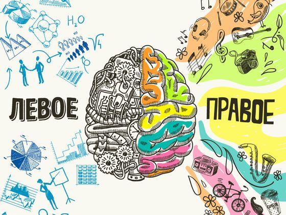 Тест: Какое полушарие вашего мозга доминирует?