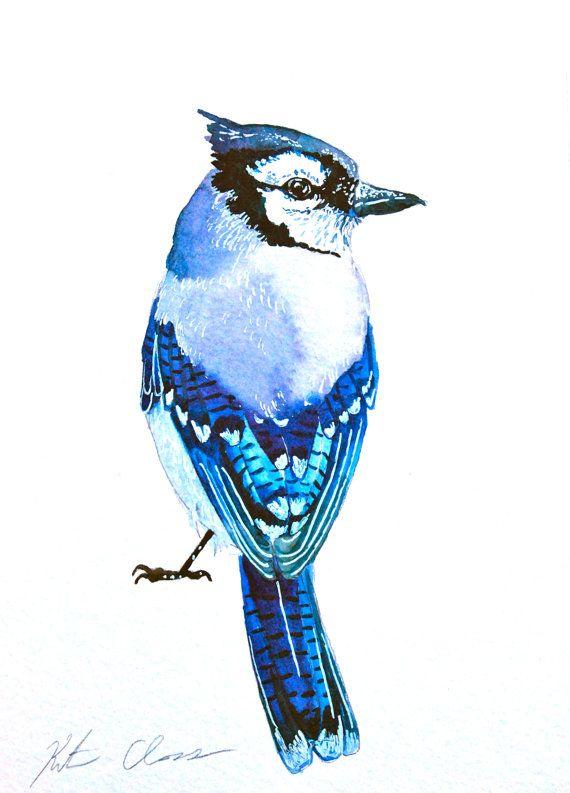 Watercolor Painting Blue Jay Bird Painting Original by WoodPigeon