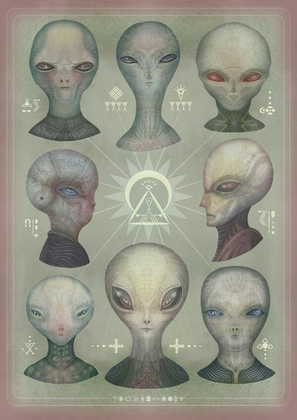 "Types of extraterrestrials found on genetically generic planets and/or dimensional ""portals"". Even successful allelic variance does suggest other beings with comparable or greater intelligence than homo sapiens or homo cromagnons quite likely developed biologically similar physically. But this selection of would-be aliens look disturbingly like the girls I dated in high school."