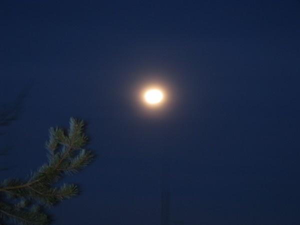 Full moon-Finland by Heli Aarniranta on ARTwanted