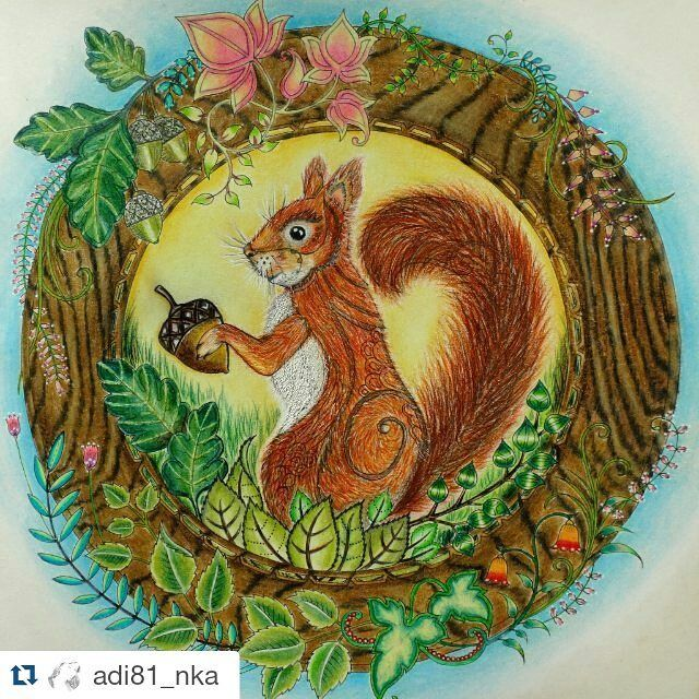 34 Best Enchanted Forest Squirrel In Circle Images On