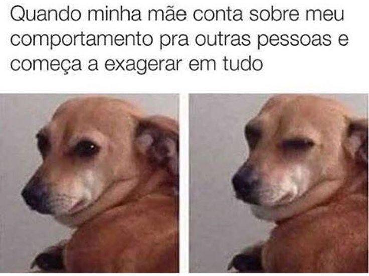 #filhode4patas #paidecachorro #maedecachorro #amocachorro #cachorro #filhode4patas #petmeupet