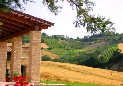 Workaway in . Help with agritourism hotel and vineyard & olives and , Italy