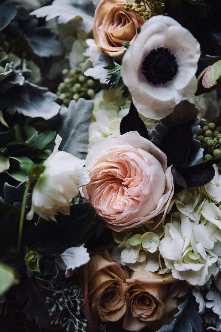 best FLORA images on Pinterest Plants Flora and Botany