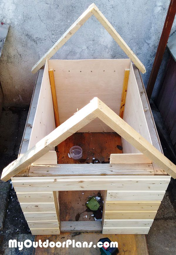 17 best images about casute pentru pisici on pinterest for Insulated outdoor dog house