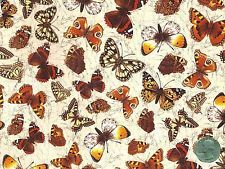 "1 Butterfly Chintz Allover Sheet 13 1/4"" X 9 1/4"" Ceramic Decal Sheet"