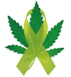 Worth Repeating: Cannabinoids Kill Pancreatic Cancer Cells