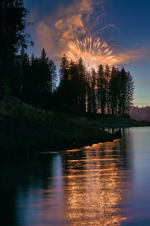 plasmatics:  Forest Fire - Bass Lake Fireworks by Darvin Atkeson | (Website)