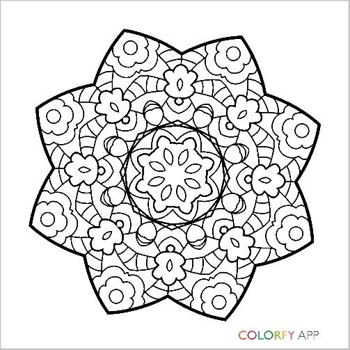 Peacock Colorfy Coloring Book App Coloring Pages