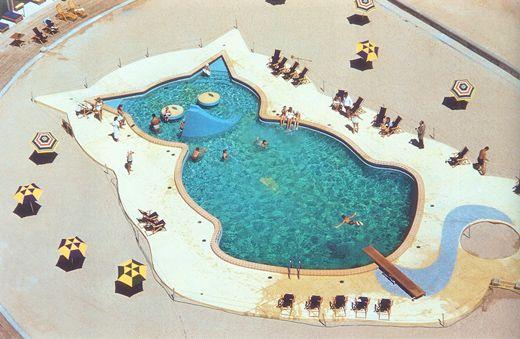 1369 Best Cool Pools Images On Pinterest Pools
