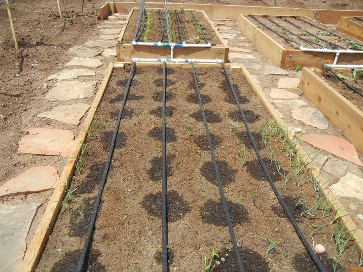 garden drip system irrigation garden irrigation system irrigation and vegetable garden