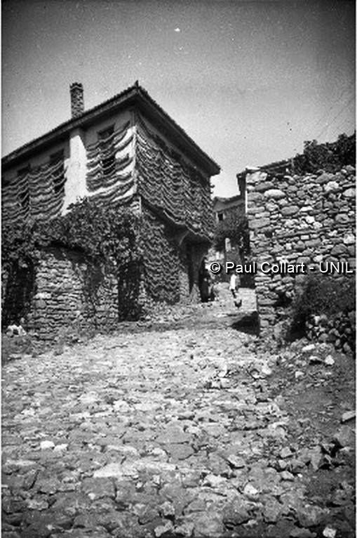 Μακεδονία, περιοχή Τρίτα, ξήρανση φύλλων καπνού.  Paul Collart 1926 έως 1938. Πηγή: Liza's Photographic Archive of Greece - Φωτογραφικά άλμπουμ της Ελλάδας.