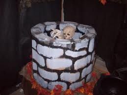 43 Best Homemade Haunted House Images On Pinterest