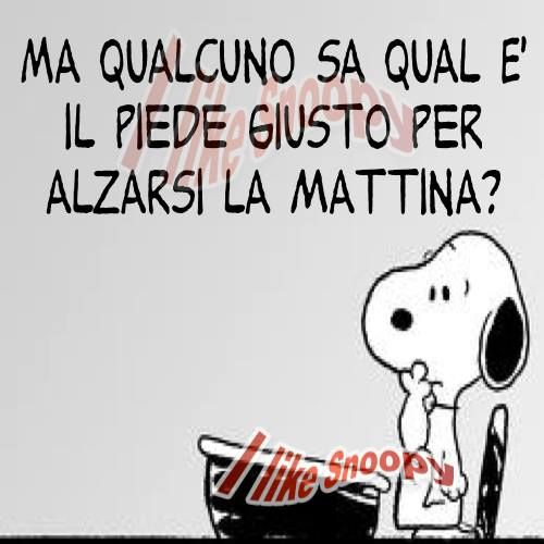 http://likesnoopy.altervista.org/blog/wp-content/uploads/2013/11/s5.jpg