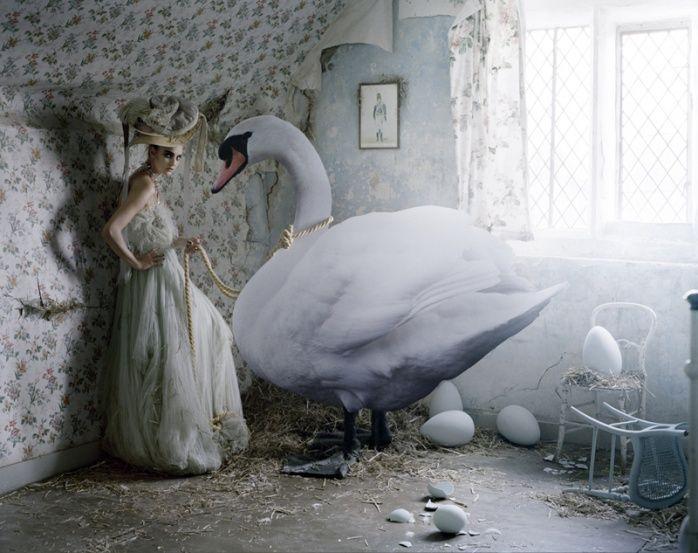 Tim Walker - CAROLINE TRENTINI & HER GIANT SWAN,  GLEMHAM HALL, SUFFOLK, 2010  BRITISH VOGUE